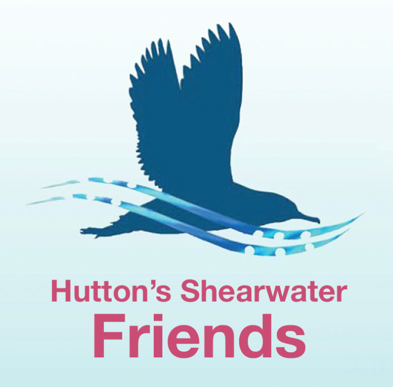 2014: Support the Hutton's Shearwater!